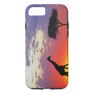 Giraffe silhouetted at sunrise, Giraffa iPhone 8/7 Case