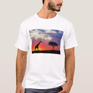Giraffe silhouetted at sunrise, Giraffa T-Shirt