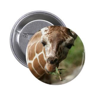 Giraffe Snack Round Pin