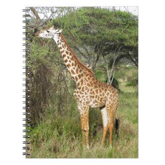 giraffe spiral note books