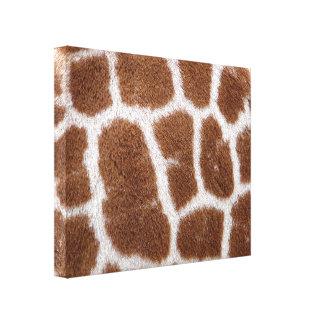 Giraffe Spots Stretched Canvas Prints