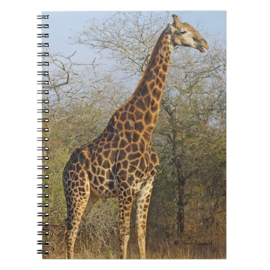 Giraffe Standing Tall Journal