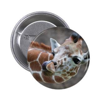 Giraffe Tongue Button