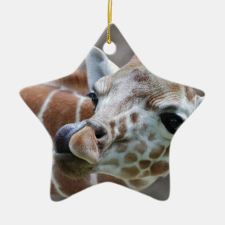 Giraffe Tongue Ornament
