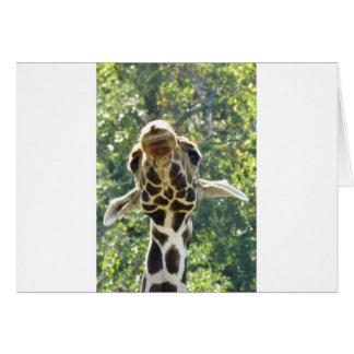 Giraffe too jpg greeting cards