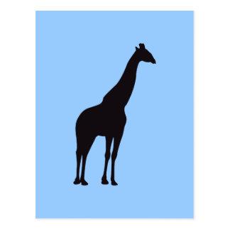 Giraffe Vintage Wood Engraving Postcard