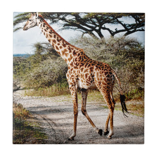 Giraffe Wild Animal Africa pattern print Small Square Tile