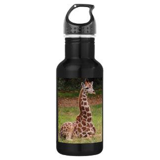 Giraffe Wildlife Animal Photo 532 Ml Water Bottle