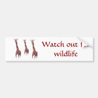 Giraffe Wildlife Art Bumper Sticker