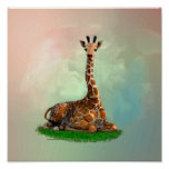 Giraffe Wildlife Wild Animals Poster