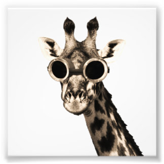 Giraffe With Steampunk Sunglasses Goggles Photo Print