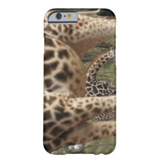Giraffes 2 barely there iPhone 6 case