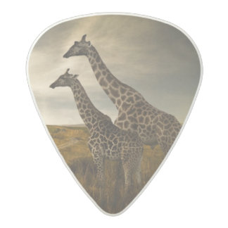 Giraffes and The Landscape Acetal Guitar Pick