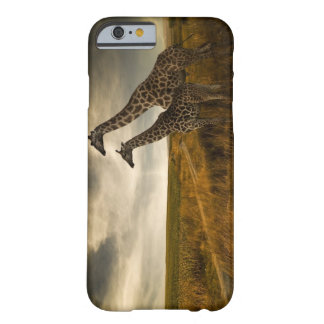 Giraffes and The Landscape Barely There iPhone 6 Case