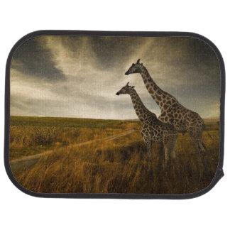 Giraffes and The Landscape Car Mat