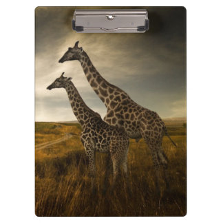 Giraffes and The Landscape Clipboard