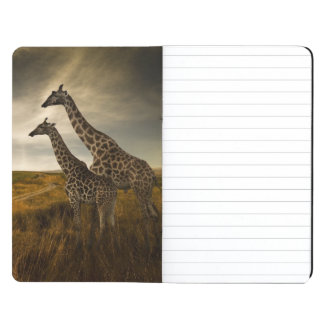 Giraffes and The Landscape Journals