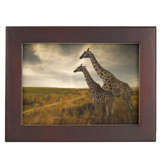Giraffes and The Landscape Keepsake Box