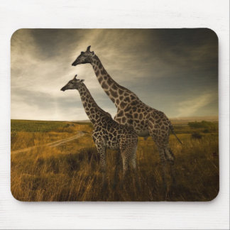 Giraffes and The Landscape Mouse Mat