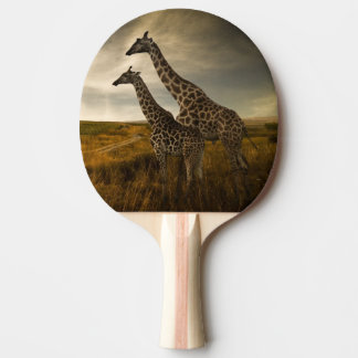 Giraffes and The Landscape Ping Pong Paddle