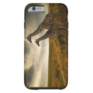Giraffes and The Landscape Tough iPhone 6 Case