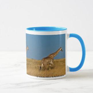 Giraffes at Etosha NP