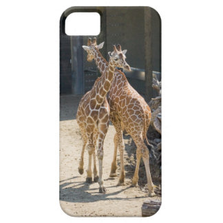 giraffes barely there iPhone 5 case