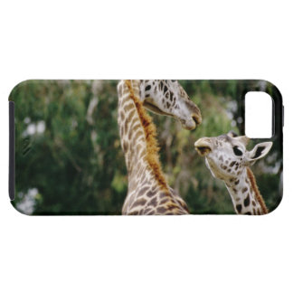 Giraffes Case For The iPhone 5