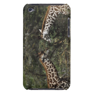 Giraffes Feeding On Acacia Branch, Africa Case-Mate iPod Touch Case