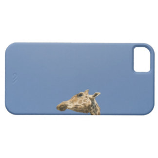 Giraffe's head barely there iPhone 5 case