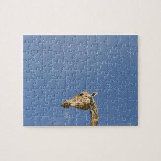 Giraffe's head jigsaw puzzle