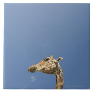 Giraffe's head tile