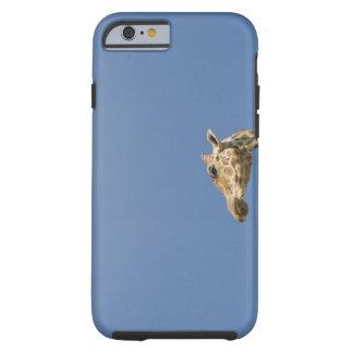 Giraffe's head tough iPhone 6 case