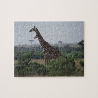 Giraffes in Africa Jigsaw Puzzle