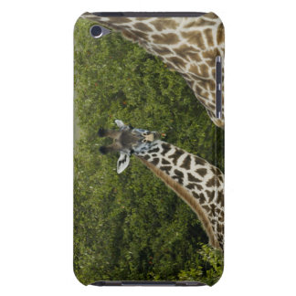 Giraffes in Kenya, Africa 2 Barely There iPod Case