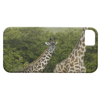 Giraffes in Kenya, Africa 2 Case For The iPhone 5