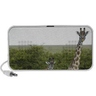 Giraffes in Kenya, Africa 2 Portable Speaker