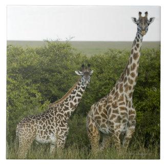 Giraffes in Kenya, Africa 2 Tile