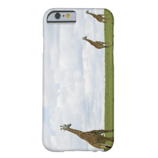 Giraffes in Kenya, Africa Barely There iPhone 6 Case