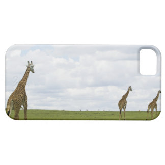 Giraffes in Kenya, Africa Case For The iPhone 5