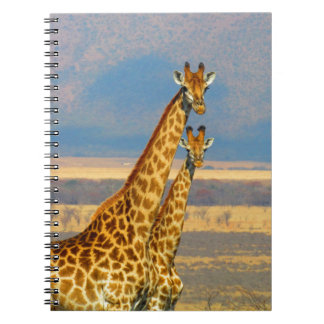 Giraffes in South Africa beautiful nature scenery Notebook