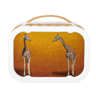 GIRAFFES LUNCH BOX