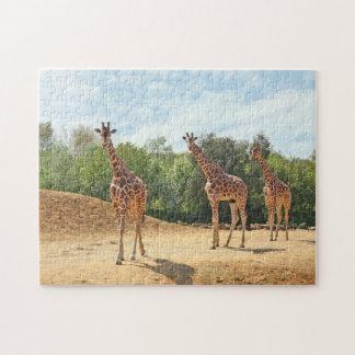 Giraffes Puzzle
