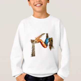 girl-1640047_1920 sweatshirt