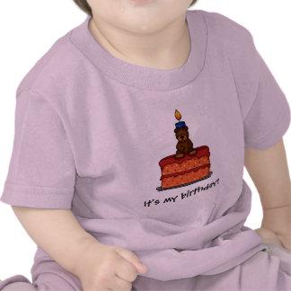 girl bear on Birthday cake t-shirt