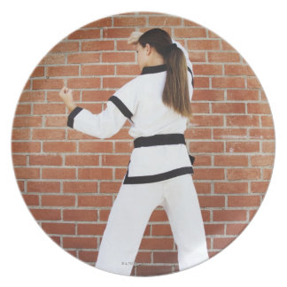 Girl doing martial arts plate