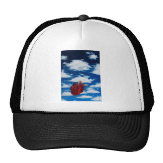 Girl on swing in clouds cap