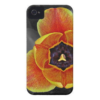 Girl-y Flower-y Tulip iPhone case
