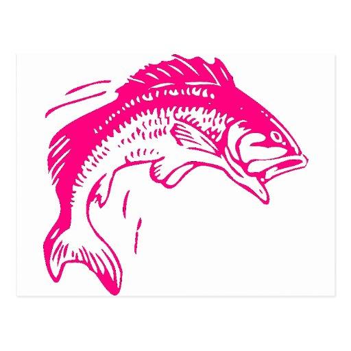 Girls Who Fish Deserve Bigger Diamonds Post Card