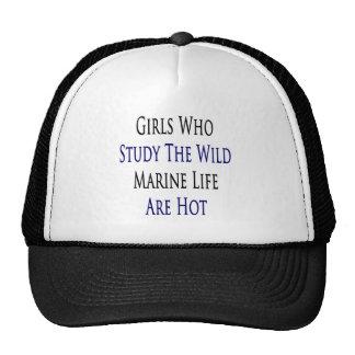 Girls Who Study The Wild Marine Life Are Hot Trucker Hats